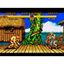 télécharger Street Fighter 2